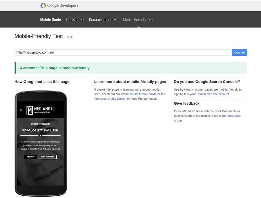 Google Mobile Friendly Test Tool fig1